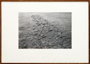 Richard LONG, <em>A Line of Sticks in Somerset</em>, 1974